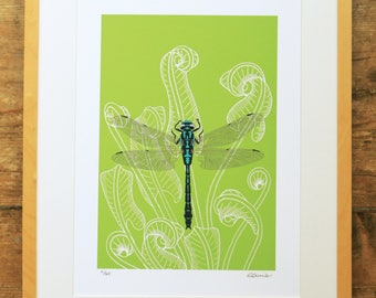 Dragonfly & fern limited edition A3 print