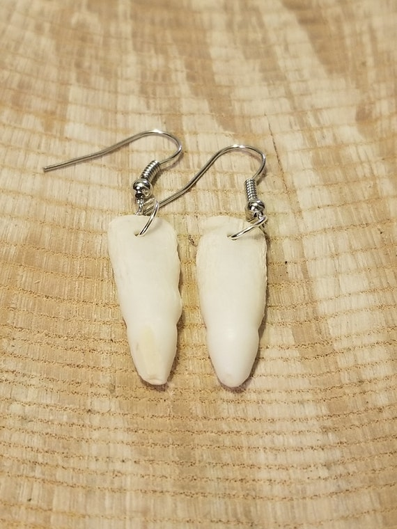 Handmade Real Alligator Tooth Silver Drop Earrings Native American Tribal Outdoor Teeth Fashion Art Fangs Collection (E198)
