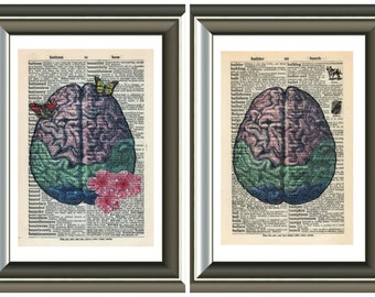 Human Brain  vintage anatomy Mounted Art Print. An original antique,dictionary book page. choose picture