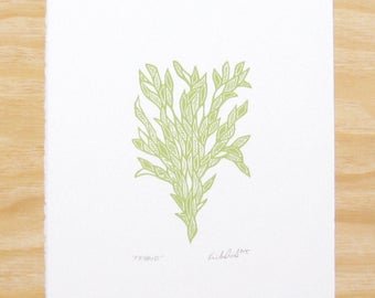 "Woodblock Print - ""Friend"" Sprout Green - Plant Printmaking"