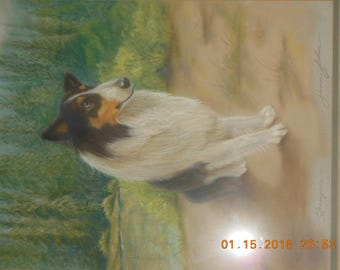 Pastel painting Drawing of a Collie Dog signed June Holm Gaslight Art Colony