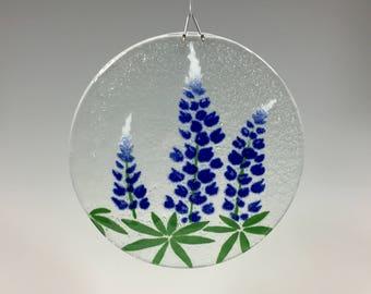 Bluebonnets, Texas Bluebonnets, Lupine, Texas State Flower