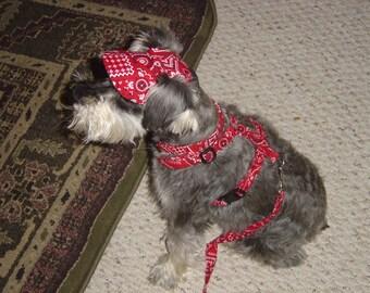 Small Dog Visor Hat