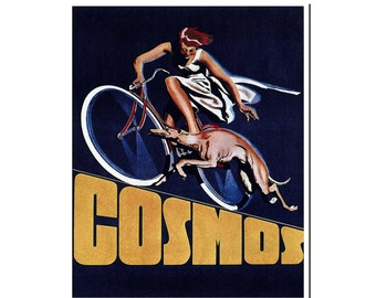 Retro Bike Poster Vintage Cycling Art Print (H232)