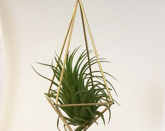 Hanging Square Prism Brass Himmeli - Large (excludes air plant)