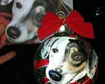 Hand Painted Pet Portrait  Ornaments
