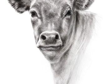 Cow Drawing Charcoal Farm Art Print