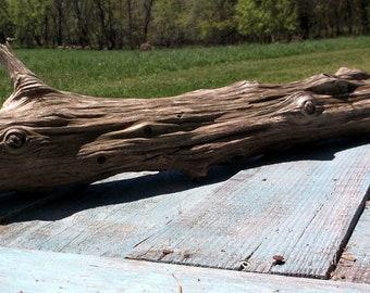 Interesting Piece of Lightweight Natural Driftwood Taxidermy Aquarium Art Sculpture Yard Garden Lake shore Decor Beach Rustic  #418-13