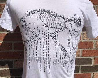 Vintage Cat Skeleton Diagram Bella Canvas T-Shirt