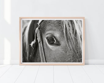 Black and White Horse Print, Horse Closeup Printable Art, Digital Download, Horse Poster, Horse Portrait Wall Decor, Horse Eye Photo Print