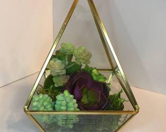 Geometric Succulent Terrarium