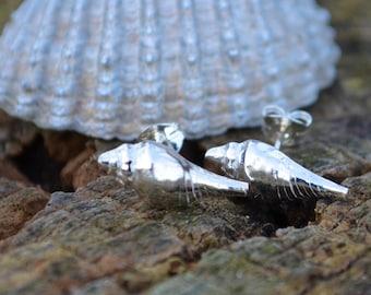 Fine Silver shell stud earrings