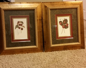 Strawberries and Raspberries Set of Framed Art - Detailed Gold and Brown Tone Frames - 50% OFF Blowout Sale - Kitchen , Food Art