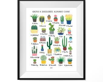 Cactus & Succulents Alphabet Chart Art Print
