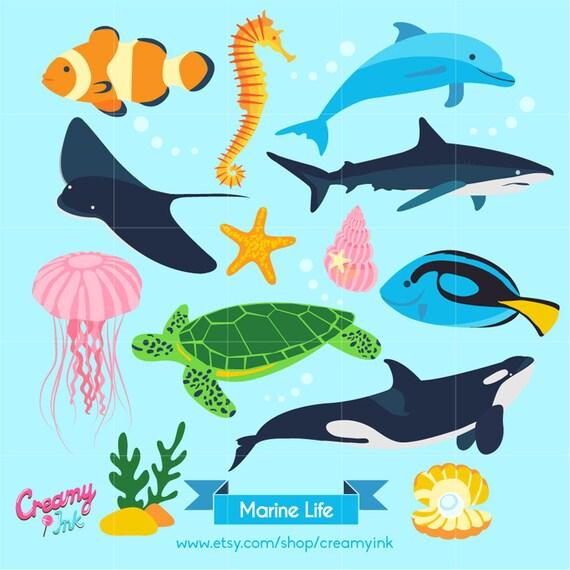 ocean digital vector clip art marine life clipart design rh etsystudio com ocean life clipart black and white marine life clipart