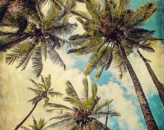 Palm Tree Beach Decor, Kauai Art Print, Vintage Hawaii, Kauai Island Photography, Blue Hawaii, Teal, Summer Photograph - Kauai Island Palms