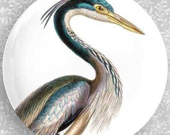 Heron plate