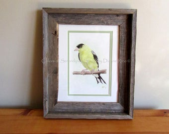 "Goldfinch - Original Watercolor Songbird Painting with Barn Wood Frame, Double Matted, 10 1/2"" x 12 3/4"""
