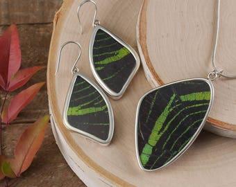 Set Real Butterfly Wing Earrings & Butterfly Wing Pendant in Sterling Silver - Butterfly Earrings, Butterfly Pendant Butterfly Jewelry J1166