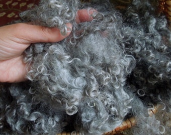 Wensleydale Fleece, Washed, Undyed Silver Gray, 2 Ounces, Natural, Fiber, Wool, Spin, Felt