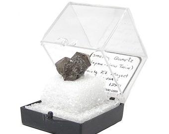 Quartz Japon loi Twin Crystal foncé Quartz fumé vignette spécimen aimant Cove une collection de minéraux immobilier, pierres précieuses USA