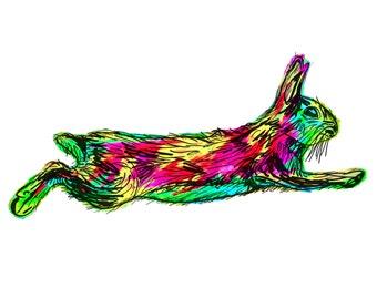 "Rabbit(4C) Giclée Print - Cavanata - 8"" X 10"" Rabbit Graphic Fine Art Print, Original Illustration, Animal Art"