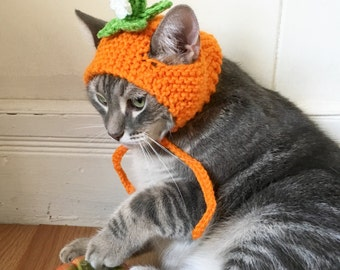 Pumpkin cat hat, Pumpkin hat, hat for cats and small dogs, cat accessories, flower hat for cats