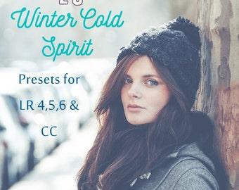 Winter Light Pack - 20 Presets for Lightroom 4, 5, 6 & CC