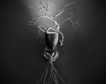 Roots Collection. Roots of Destiny Wall Light
