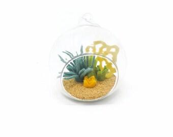 Felt Terrarium Glass Ball· Air Plant· Moss· Lichen· Succulent· Hanging Plant· Glass Terrarium· Wool Felt· Fake Plant· Housewarming Gift