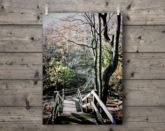 Stairway to Autumn / Nature Landscape Photography Print /  Fall Forest Woodland Wall Art / Rustic Outdoors Home Decor