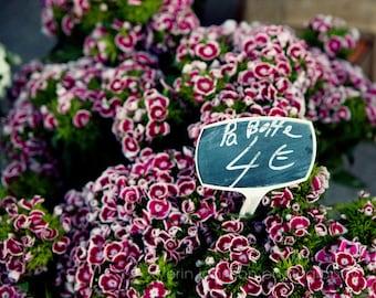 europe photography, french flower market, marseille france, purple decor, flower photography, europe decor