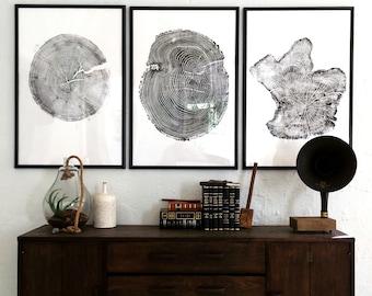 Large Triptych, Tree ring prints, Large tree print, Oversized art, tree print art, tree rings, Linton, Natural art, large art prints, Trees
