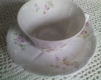Bassett Limoges Austria Cup and Saucer - 2 sets