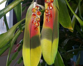 Vibrant Amazonian Feather Earrings
