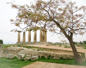 Roman Ruins in Ancient Corinth, Flowering Tree Leaning over the Ruins in ancient Corinthia, Historic Site, Archeological Diggings