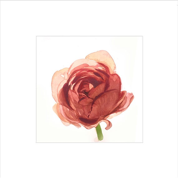 Watercolor flower painting-blush Ranuncula- original by Gretchen Kelly