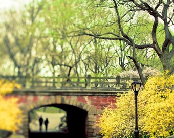 Central Park Print, Green, Yellow,  New York Photography, NYC art, Central Park Bridge, Spring Nature Photography