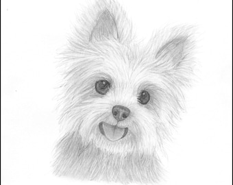 Custom Pet Drawing - Proceeds Benefit Animal Shelters