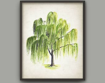 Captivating Weeping Willow Tree Watercolor Art Print, Woodland Poster, Tree Painting,  Forest Decor, Awesome Ideas