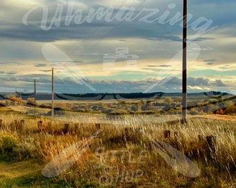 Open Space with Power Lines Landscape Canvas Photography