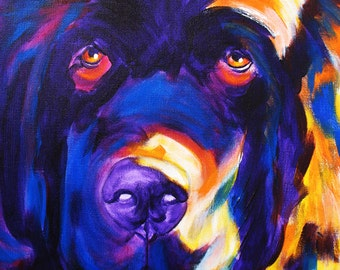 Newfoundland, Pet Portrait, DawgArt, Dog Art, Pet Portrait Artist, Colorful Pet Portrait, Newfoundland Art, Art Prints, Art