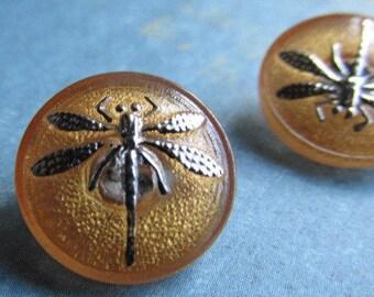 Gold with Gold Czech Dragonfly Button, 18mm Czech Glass Button, 18mm Button, Buttons,  Dragonflies, Czech Glass Buttons, Glass buttons