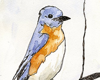 Bluebird Art Print: Watercolor With Pen and Ink / Wall Art Print / Illustration / Painting / Drawing