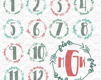 First Year Month Shirt Svg, Month Shirt Svgs, Arrow Circle svg, Monogram frame svg, Birthday svg, Birthday Monogram svg, Silhouette, Cricut,