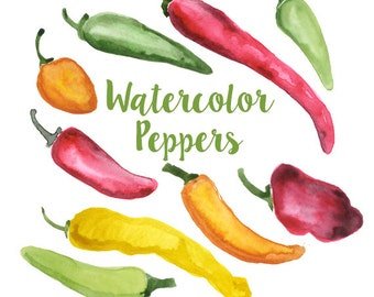 Watercolor Bell Peppers, Bell Pepper Clip Art, Pepper Clipart, Veggie Clipart, Culinary Clip Art, Food Clipart, Pepper Clip Art, Food Art