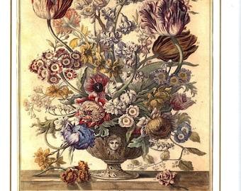 "April Flowers Art Print- 12 MONTHS of FLOWERS- 1700s Botanical Illustration- Winterthur Floral Arrangement- new baby wedding gift 7.75 x 10"""