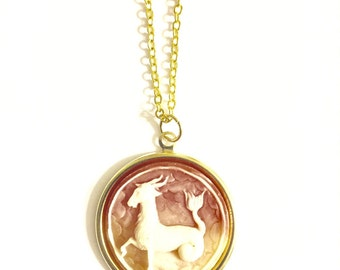 Aries Astrology Necklace, Astrology Necklace, Vintage Astrology Cameo Necklace