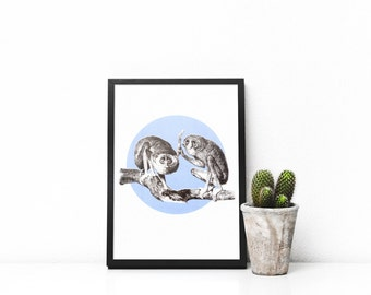 Screen print poster - handmade screen print of two slender lorises in powder blue, A4 210x297mm, for all occasions.
