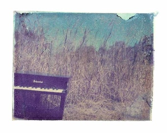 Piano in Grass Polaroid Music Blue Vintage Art 11x14 Print